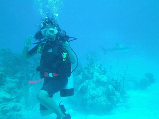 Dive Exuma: Shark's coming up behind you!