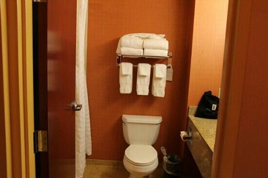 Embassy Suites by Hilton Hampton Hotel Convention Center & Spa: clean bathroom