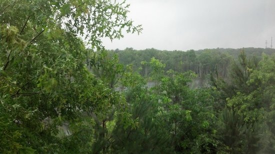 Hilton Garden Inn Atlanta Northpoint: View out window