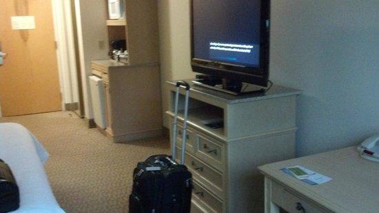 Hilton Garden Inn Atlanta Northpoint: TV