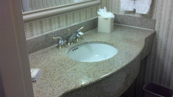 Hilton Garden Inn Atlanta Northpoint: Sink