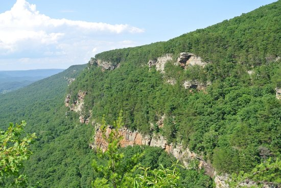 Cloudland Canyon State Park 사진