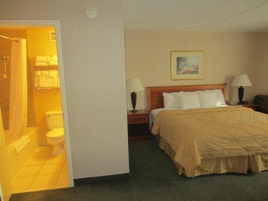 Comfort Inn & Suites Syracuse Airport: Bedroom and bathroom on one side