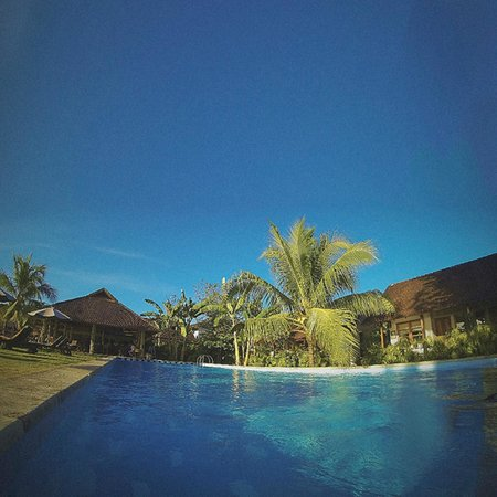 Cocotinos Manado: View from the pool.