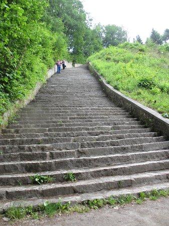 Mauthausen : Steps to the quarry.