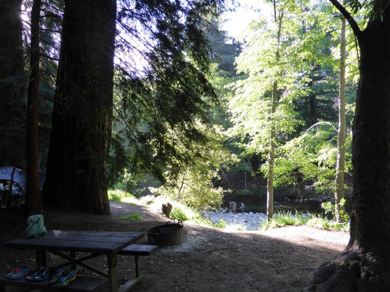 View form site to river picture of big sur campground for Big sur campground and cabins