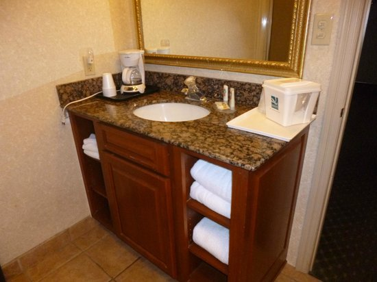 Quality Inn Gunnison: Sink Space Small