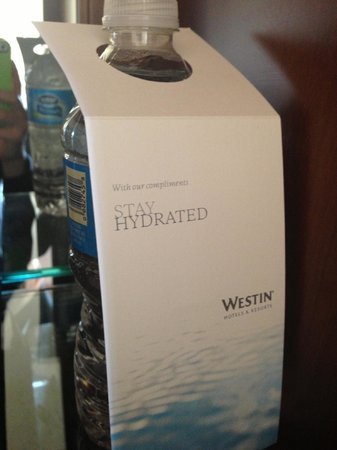 The Westin Pasadena: I liked that the water was free.