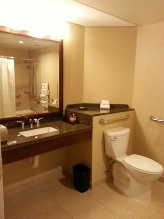Minneapolis Marriott City Center: Large and spacious bathroom
