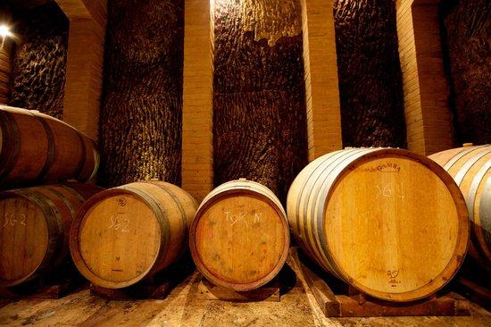 Torraccia di Chiusi: Wine Cellar