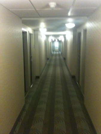 Holiday Inn Express & Suites Ottawa West - Nepean: Well lit hallway