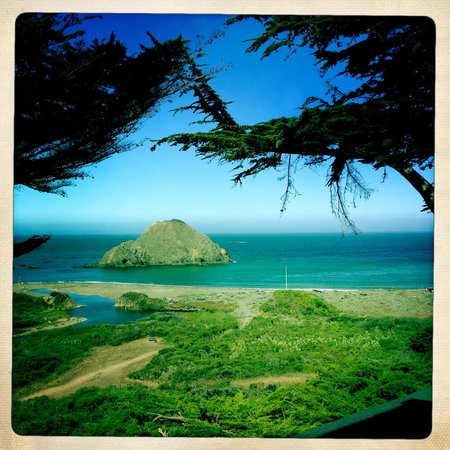 The Elk Cove Inn & Spa: view out the window from Seascape Room
