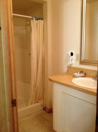 Durrwood Creekside Lodge B&B : Shower/Sink