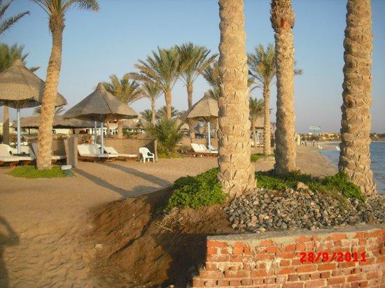Dessole Alexander the Great Hotel : Пляж