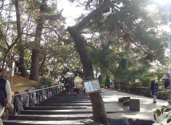 Shizuoka, Japan: 1月1日でも暖かかった。 人もたくさん
