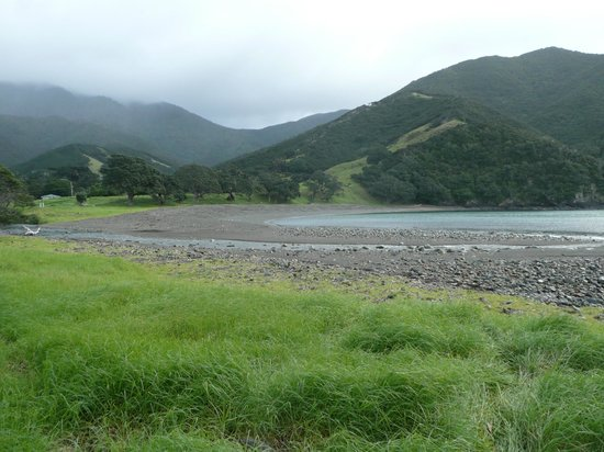 Coromandel Discovery Day Tours: Stony Bay - End of the walk