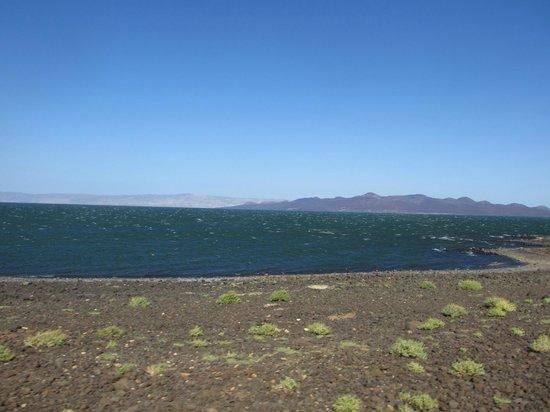 Desert Museum: Lake Turkana