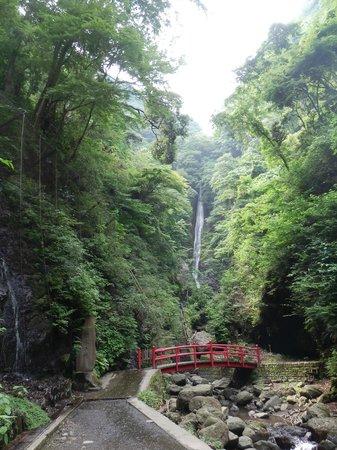 Shasui Falls: 洒水の滝