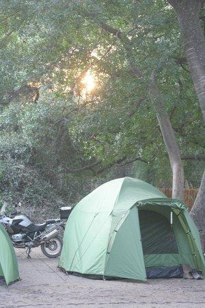 Drotsky's Cabins: Campsite