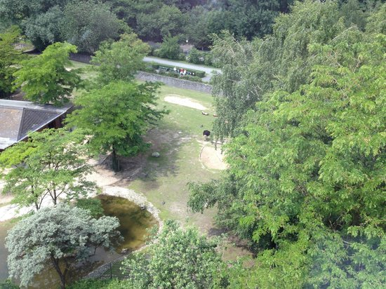SO/ Berlin Das Stue: Blick in den Tiergarten