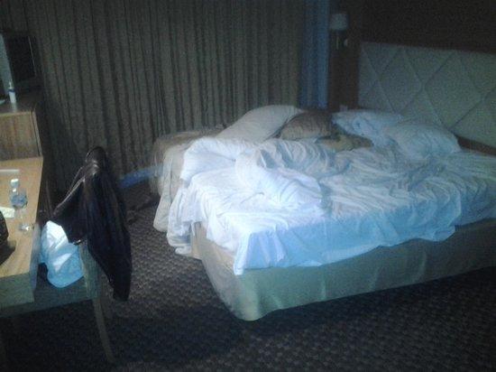 Milan Hotel: DasStandart Zweibettzimmer