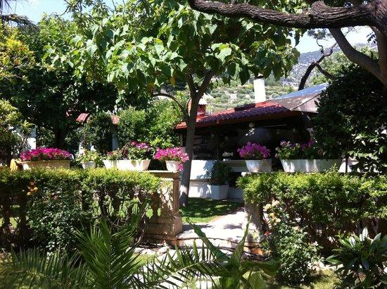 Villa Giardino: Gardens