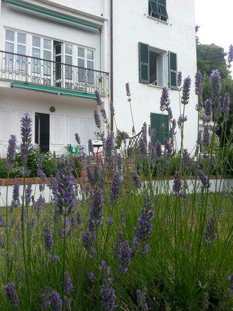 B&B Al Lizzo : The garden