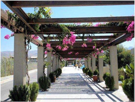 Astir Odysseus Resort & Spa: Allée menant au chambre ou à la plage