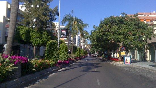 Avenida Ricardo Soriano : Avenida