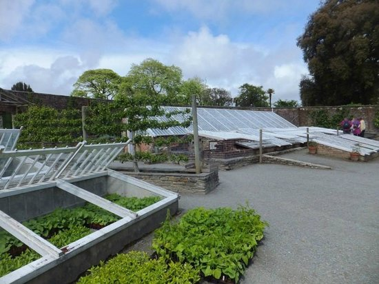 The Lost Gardens of Heligan: the glass houses
