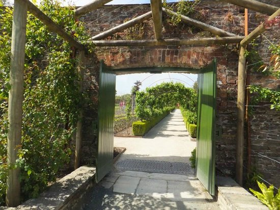 The Lost Gardens of Heligan : Walled garden