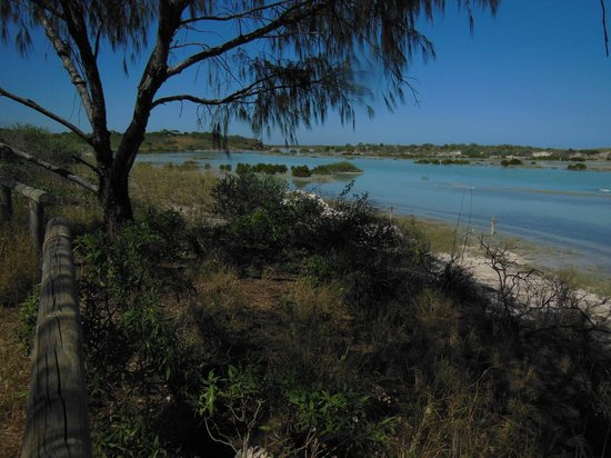 Coconutz Bed & Breakfast: The lagoon at high tide - dry at low tide