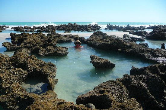 Coconutz Bed & Breakfast: Our own rock pools during low tide
