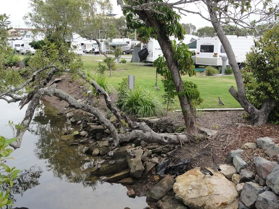 Caloundra Waterfront Holiday Park: RV park area.