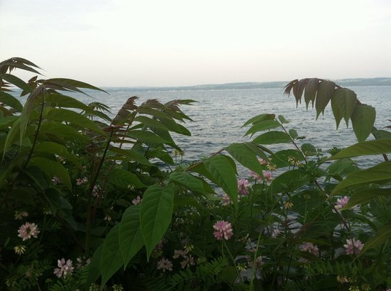 Sampson State Park : Seneca Lake