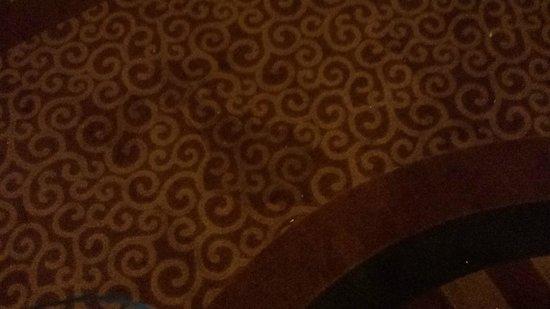 Doubletree by Hilton Hotel Hartford - Bradley Airport: Disgusting stains all throughout the hotel and hallways that do not appear to have been vacuumed