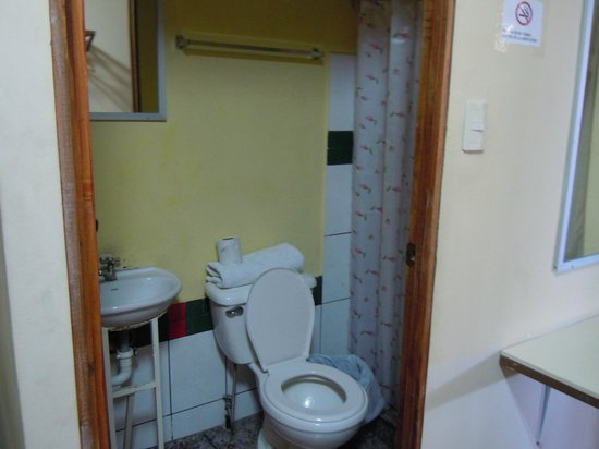 Green House Hostel: Bathroom