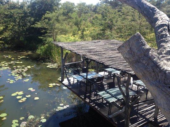 Pamuzinda Lodge: Lovely lunches!