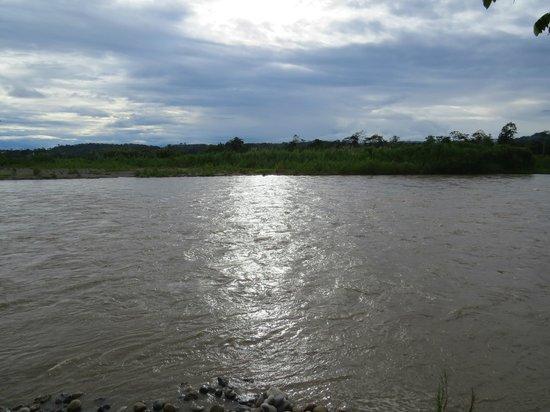 Anaconda Lodge Ecuador: Rio Napo