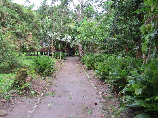 写真Anaconda Lodge Ecuador Amazonia枚