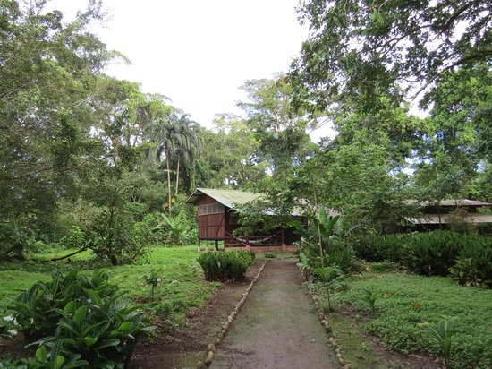 Anaconda Lodge Ecuador: Grounds