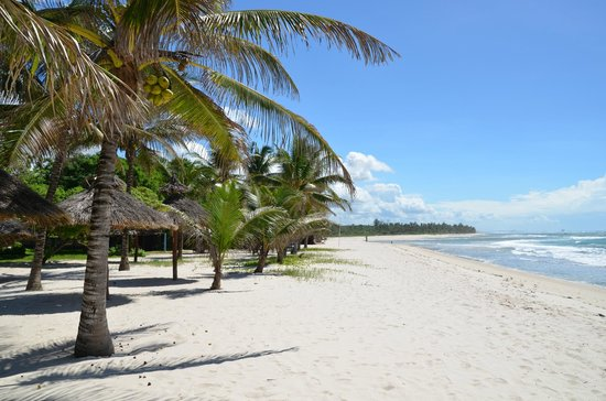 diani beach - How To Get From Mombasa Airport To Diani Beach