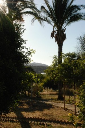 El Sueno: Vejer in the distance from the garden