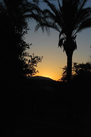 El Sueno: Sunset in the garden - Vejer in the distance