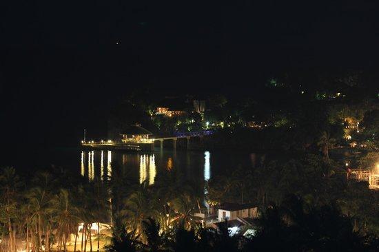 Argonauta Boracay: Вид