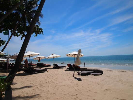 New Star Beach Resort: Beach