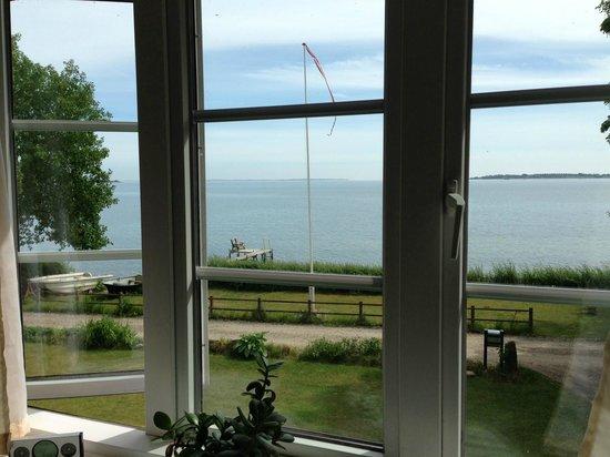 Allan Lindholm Andreassen: View