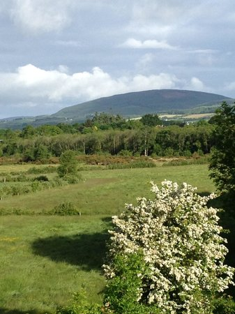 View from Templemore B&B
