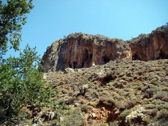 Karidi - Picture of Gorge of the Dead, Kato Zakros ...