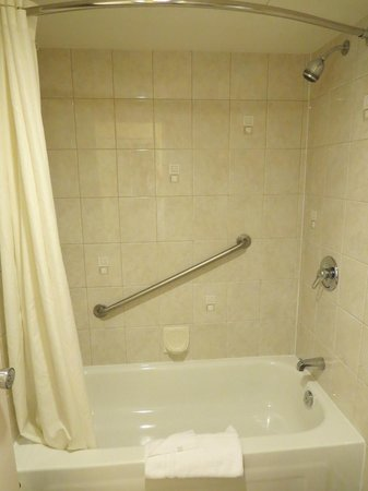 BEST WESTERN PLUS Burnaby Hotel and Conference Centre : shower room